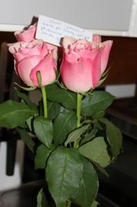 tn_blommor 001